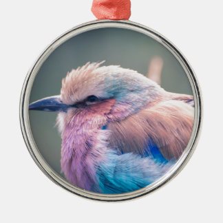 South African Lilac-Breasted Roller Silver-Colored Round Decoration