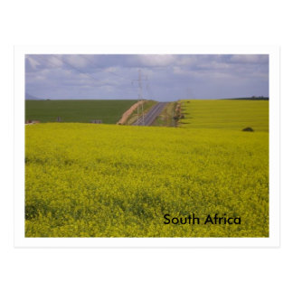 South African scenery Postcard