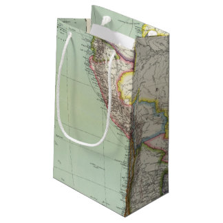 South America 42 Small Gift Bag