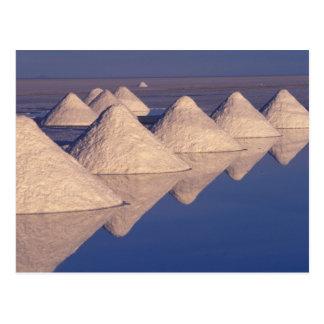 South America, Bolivia. Salar de Uyuni Postcard
