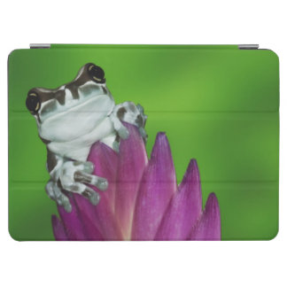 South America, Brazil, Amazon Basin. Close-up of 2 iPad Air Cover