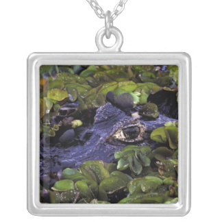South America, Brazil, Amazon Rainforest, 3 Silver Plated Necklace
