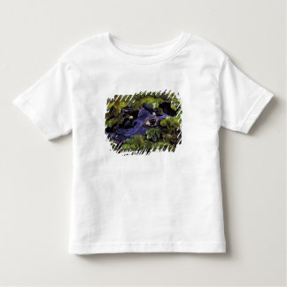 South America, Brazil, Amazon Rainforest, 3 Toddler T-Shirt