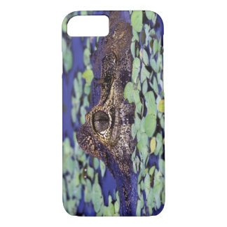 South America, Brazil, Amazon Rainforest, 4 iPhone 8/7 Case