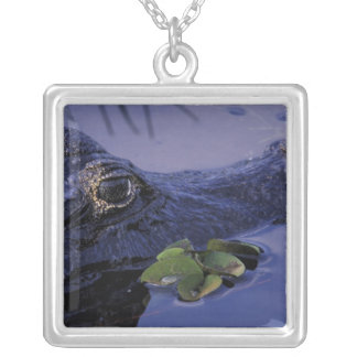 South America, Brazil, Amazon Rainforest, Silver Plated Necklace