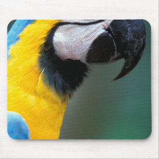 South America, Brazil, Iguacu Natioanl Park, Mouse Mat