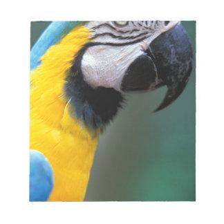 South America, Brazil, Iguacu Natioanl Park, Notepad
