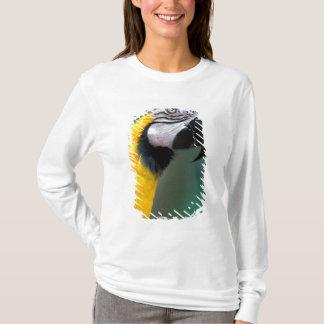 South America, Brazil, Iguacu Natioanl Park, T-Shirt