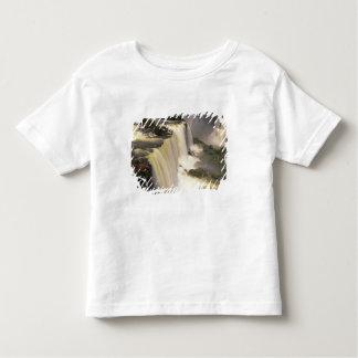 South America, Brazil, Igwacu Falls, Igwazu Toddler T-Shirt