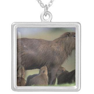 South America, Brazil, Pantanal Capybara Square Pendant Necklace
