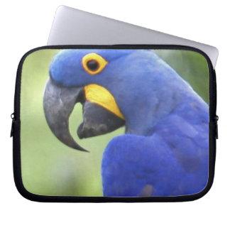 South America, Brazil, Pantanal. The endangered Computer Sleeve