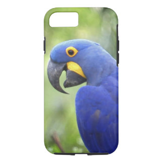 South America, Brazil, Pantanal. The endangered iPhone 7 Case