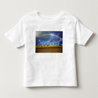 South America, Chile, Easter Island. The full Toddler T-Shirt