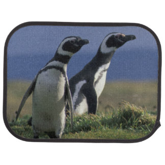 South America, Chile, Patagonia, Magellanes, 2 Car Mat