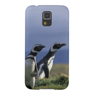 South America, Chile, Patagonia, Magellanes, 2 Galaxy S5 Cover