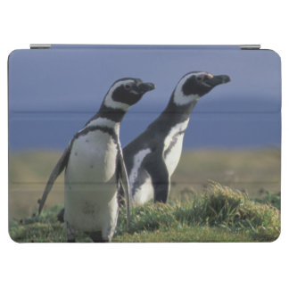 South America, Chile, Patagonia, Magellanes, 2 iPad Air Cover