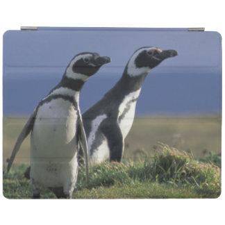 South America, Chile, Patagonia, Magellanes, 2 iPad Cover