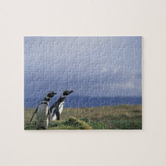 South America, Chile, Patagonia, Magellanes, 2 Jigsaw Puzzle
