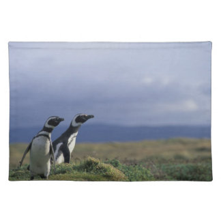 South America, Chile, Patagonia, Magellanes, 2 Placemat