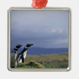 South America, Chile, Patagonia, Magellanes, 2 Silver-Colored Square Decoration