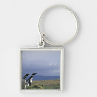 South America, Chile, Patagonia, Magellanes, 2 Silver-Colored Square Key Ring
