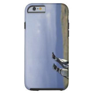 South America, Chile, Patagonia, Magellanes, 2 Tough iPhone 6 Case