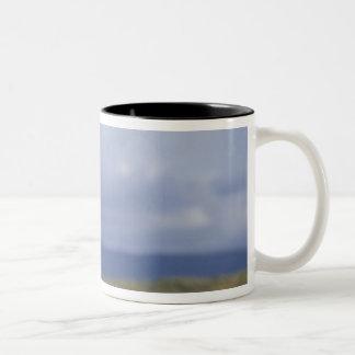 South America, Chile, Patagonia, Magellanes, 2 Two-Tone Coffee Mug