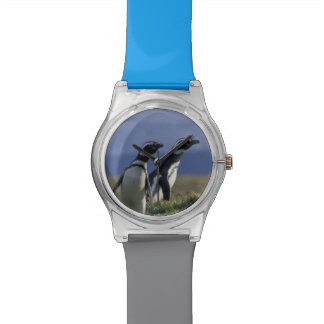 South America, Chile, Patagonia, Magellanes, 2 Wristwatches