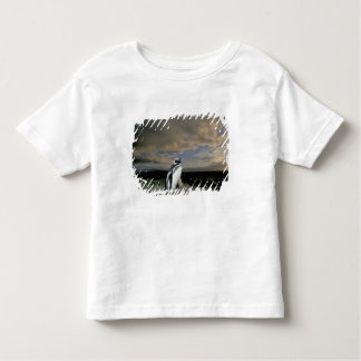 South America, Chile, Patagonia, Magellanes, Toddler T-Shirt