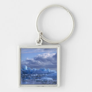 South America, Chile, San Rafael Lagoon NP. Key Ring