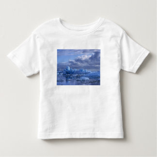 South America, Chile, San Rafael Lagoon NP. Toddler T-Shirt