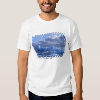 South America, Chile, San Rafael Lagoon NP. Tshirt