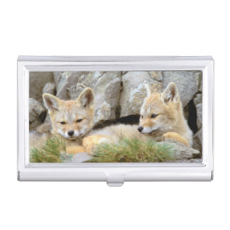 South America, Chile, Torres del Paine Business Card Holder
