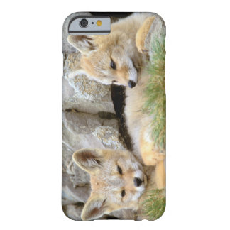 South America, Chile, Torres del Paine Barely There iPhone 6 Case