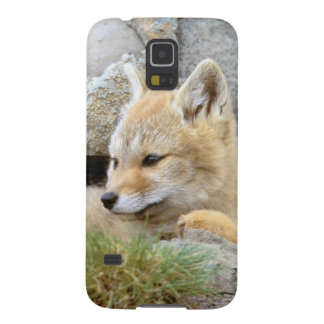 South America, Chile, Torres del Paine Case For Galaxy S5