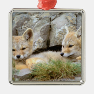 South America, Chile, Torres del Paine Christmas Ornament