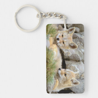 South America, Chile, Torres del Paine Double-Sided Rectangular Acrylic Key Ring