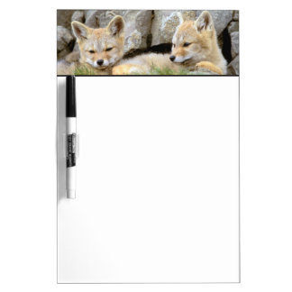 South America, Chile, Torres del Paine Dry Erase Board