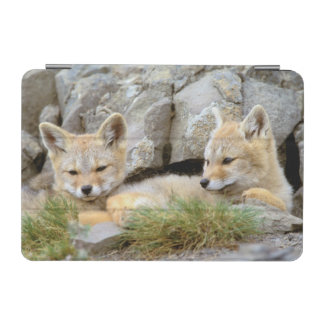 South America, Chile, Torres del Paine iPad Mini Cover