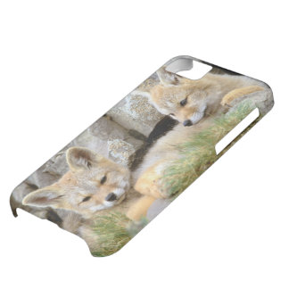 South America, Chile, Torres del Paine iPhone 5C Case