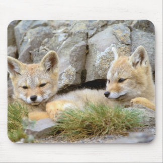 South America, Chile, Torres del Paine Mouse Mat