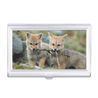 South America, Chile, Torres del Paine National Business Card Holder