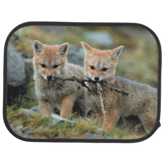 South America, Chile, Torres del Paine National Car Mat