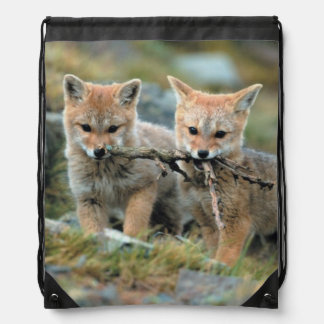 South America, Chile, Torres del Paine National Drawstring Bag