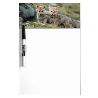 South America, Chile, Torres del Paine National Dry Erase Board