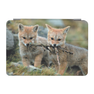 South America, Chile, Torres del Paine National iPad Mini Cover