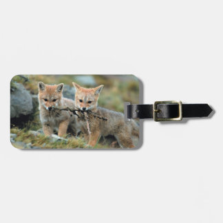 South America, Chile, Torres del Paine National Luggage Tag