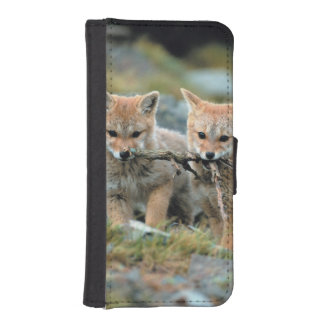South America, Chile, Torres del Paine National Phone Wallets