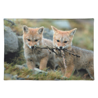 South America, Chile, Torres del Paine National Placemat
