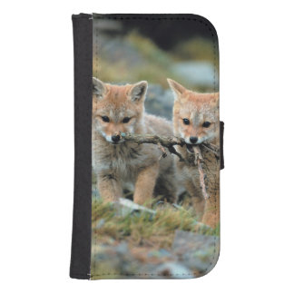 South America, Chile, Torres del Paine National Samsung S4 Wallet Case